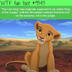 Trendy Quotes Disney Movies Mind Blown The Lion King Ideas Funny Disney Facts, Disney Jokes, Punk Disney, Lion King Funny, Lion King Meme, The Lion King, Lion King Quotes, Disney Theory, Disney Secrets