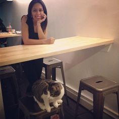 New York City has it's first cat cafe and Meow Parlour is as cute as you would expect it to be when you mix macarons from Macaron Parlour and time to pet cute rescue cats from Kitty Kind