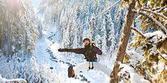 Whistler Winter Ziplining, Ziptrek & Zoom Tours | Tourism Whistler Official Resort Website | Whistler, BC Canada