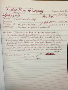 Papier Plume - Burgundy Ink Review