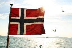 The Norwegian Flag Norwegian Flag, Fjord Horse, Beautiful Norway, National Anthem, Star Sky, My Heritage, Horseback Riding, Scandinavian, Places To Go