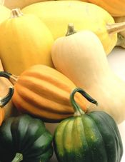 All About Pumpkins - Pumpkin Facts and Information