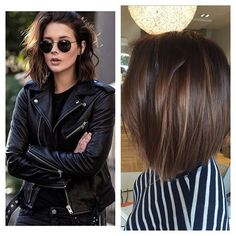 This is the chop that everyone is asking for.. Take the plunge and take your bob above the shoulders!! This looks is so effortlessly… Above The Shoulder Haircuts, Above Shoulder Length Hair, Shoulder Bob, Bob Morena, Fall Hair, Balayage Bob Brunette, Brunette Haircut, Balayage Brune, Short Brunette Hair Cuts