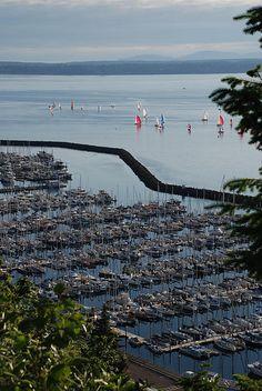 Shilshoe Bay Marina - Seattle