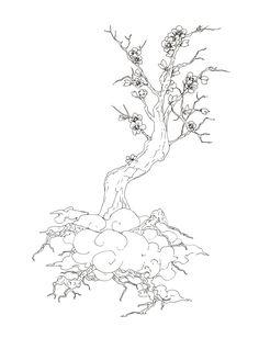 cerisier cumulus