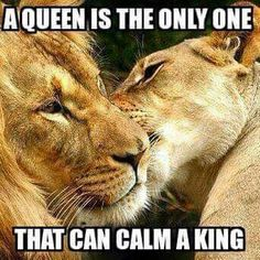 My King. I does this.