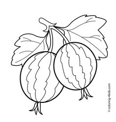 Two Gooseberries Fruits And Berries Coloring Pages For Kids Printable Free