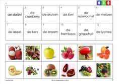 mini loco fruit 9