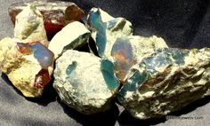 Dominican Selected Clear Green amber specimen stones. Murs Pastel, Amber Fossils, Bleu Pastel, Blue Amber, Rock Collection, Alexandrite, Fantasy Inspiration, Dominican Republic, Rocks And Minerals
