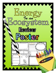 Food Chain, Food Web, Ecosystem Energy Review POSTER Activity 4th Grade Science, Science Biology, Teaching Science, Life Science, Student Learning, Fourth Grade, Science Resources, Science Lessons, Teaching Resources