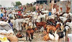 पर्यावरण एवं वन मंत्रालय द्वारा पशु संपत्ति के सन्दर्भ में नियमों का एक नया मसौदा जारी किया गया http://www.hindi.drishtiias.com/current-affairs-daily-description-in-the-case-of-animal-by-moef-property-a-new-draft-rules-released #Current_Affair #Cow_Shelters #MOEF #Welfare_Organizations
