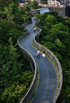 Fuzhou Forest Walkway by LOOK Architects