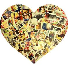 @mollykjasso  #instagram of instagrams! thank you, www.foxgram.com! $0.25 each