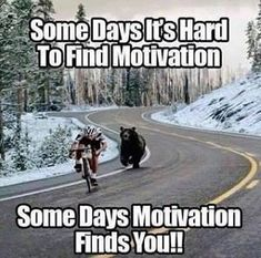 All We need to succeed in our life is Motivation. So, We are back with a massive collection of Inspirational Memes. There is 91 Motivational memes on this list Funny Animal Pictures, Funny Animals, Funny Pics, Funny Sayings, Funny Stuff, Exam Quotes Funny, Funny Ideas, Funny Shit, Frases Instagram
