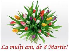 8 Martie, Happy Women, Happy Birthday, Plants, Google, Autumn, Holidays, Wallpaper, Animals
