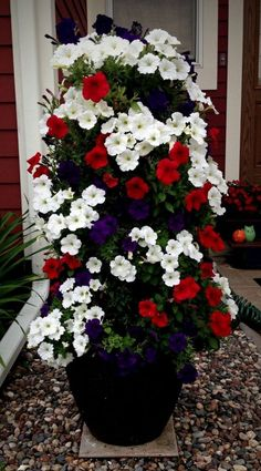 Container Flowers, Container Plants, Container Gardening, Gardening Vegetables, Gardening Tips, Diy Flowers, Flower Pots, Flower Tower, Backyard Plan