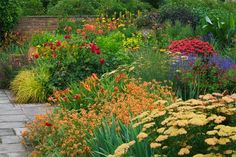 Awash with colors and shapes from early to late summer, this hot border is really fascinating. Attractive to butterflies, hummingbirds and low maintenance, most plants are deer or rabbit resistant and are recipient of prestigious awards.