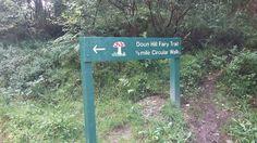 Hoy toca visitar...: DOON HILL FAIRY TAIL (BOSQUE DE LAS HADAS)