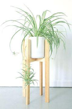 Daphne Plant Stand