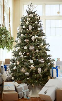 Inspiration - love the rope and scale of ornaments, bling and burlap.   Christmas Styles   Pottery Barn
