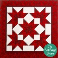 Nova by Calico Carriage. A quilt for all seasons! Using three fabrics plus background for a burst of color it is radiant in batiks, geometrics, or florals. Very easy piecing in sections. Three sizes: throw, queen and king.