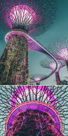Must Visit Places in Singapore You Won't Want to Miss 10 Places you have to visit in Singapore! These top Singapore attractions attract tourist from all over the world! See more on Beautiful Places To Travel, Best Places To Travel, New Travel, Vacation Places, Asia Travel, Cool Places To Visit, Travel Deals, Vacation Deals, Travel Info