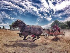 The GoPro Network: POD - Chuck Wagon Races