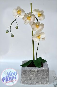 Orchids in a pot - Cake by Mon Cheri Cakes