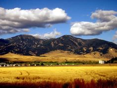 Bozeman - yes it is so pretty!  Been there . . . many times!!