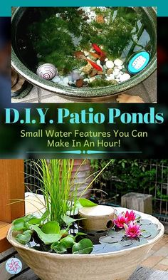 Patio Pond, Diy Pond, Ponds Backyard, Diy Patio, Small Water Features, Outdoor Water Features, Water Features In The Garden, Container Water Gardens, Small Water Gardens