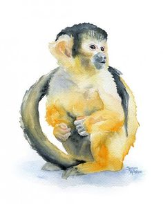 Watercolor monkey. Watercolor animal drawings by Susan Windsor