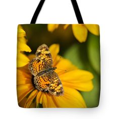 """Pretty Orange Pearl Crescent Butterfly Tote Bag by Christina Rollo (18"""" x 18"""").  The tote bag is machine washable, available in three different sizes, and includes a black strap for easy carrying on your shoulder.  All totes are available for worldwide shipping and include a money-back guarantee."""