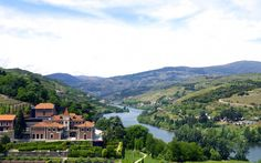 Douro Valley, Portugal is one of the Best Places to Travel in 2016 According Travel + Leisure's Magazine | 1/12/2015 For centuries, Portugal's Douro Valley, the world's first officially designated wine region, has drawn people for not only its port but also for the postcard-pretty landscapes—steep terraced vineyards carved into mountains along the Douro River and whitewashed quintas (wine estates) atop granite bluffs. #Portugal