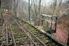 abandoned trains | Abandoned train trestle somewhere in NY by siliconwafer on railroad ...