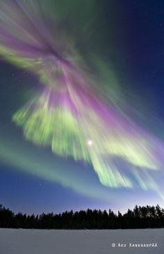 Northern Lights and the wilderness swamp Donald Kankaanpään nature photo gallery