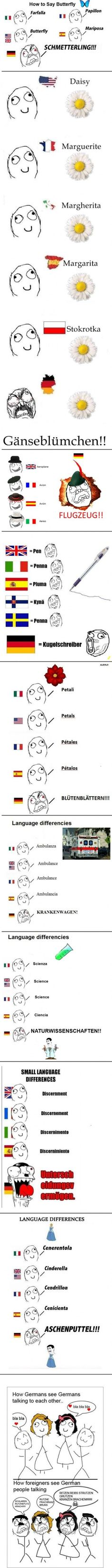 the awful german language - Reasons Why People Hate Their Jobs