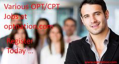 OPT Jobs in Massachusetts