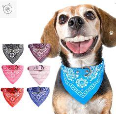 Cute pet neckerchief Dog Collar Bandana, Cat Bandana, Bandana Scarf, Cat Scarf, Cat Dog, Pet Puppy, Chihuahua Puppies, Chihuahuas, Cat Collars