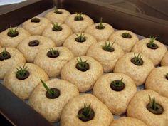 Provereni recepti. Cooks and Bakes: Integralni hlepčići sa ruzmarinom i maslinama