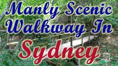 Australia Travel Video Tourism | Best Time To Visit Places In Sydney Man...
