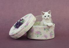 Dollhouse Miniature Kitten Cat by Kerri Pajutee *IGMA OOAK