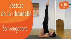 Yoga Asanas and Gym Exercises - Yoga breathing Yoga Gym, Yoga Fitness, Health Education, Physical Education, Delphine Bourdet, Yoga Position, Yoga Breathing, Yoga Motivation, Thigh Exercises