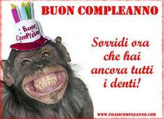 frasi-compleanno-divertenti.jpg (480×350)