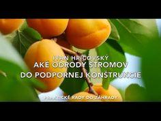 Ivan Hričovský: Aké odrody do podpornej konštrukcie? Fruit, Youtube, The Fruit, Youtube Movies