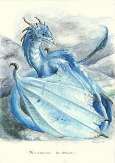 Can also be called Gold Dragon They owe the name to their very distinctive frill that reminds a sun. Watercolor Pencils Solar Dragon (c) Raironu Solar Dragon Magical Creatures, Fantasy Creatures, Fantasy Dragon, Fantasy Art, Ice Dragon, Wings Of Fire, Bat Wings, Dragon Artwork, Dragon Pictures