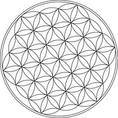Flower of Life - I want this in the logo. FOR SURE!!!
