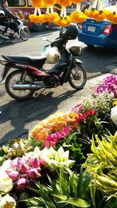Good mor ning  kad luang market chiangmai thailand ไหว้พระภูมิ ไหว้เจ้าที่ศาลตายาย สาธุสาธุค้าขายร่ำรวย9-03-2014