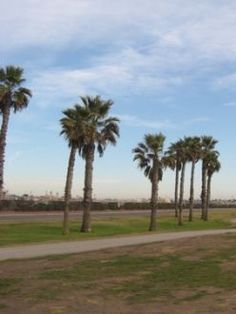 Songs of California: 100 Songs About California (picture- Huntington Beach)