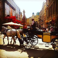 Horses and carriage ride through the streets close to Stephensplatz in the centre of Vienna. #Vienna #Wien #Austria #interrail #memories #neverstopexploring #instatravel #oldworld  #oldworldcharm #oldworldstyle #elegant #horses #clipclop #carriage #ride # (scheduled via http://www.tailwindapp.com?utm_source=pinterest&utm_medium=twpin&utm_content=post118343253&utm_campaign=scheduler_attribution)