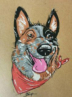 Australian Cattle Dog Stylized Portrait by TheHurriedHawk on Etsy